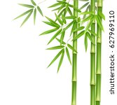 vector green bamboo stems and... | Shutterstock .eps vector #627969110