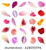 Assorted Flower Petals In...