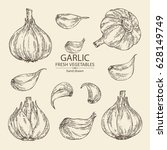 collection of garlic. hand... | Shutterstock .eps vector #628149749