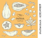 collection of papaya and papaya ... | Shutterstock .eps vector #628149809