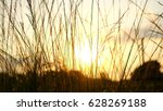 foreground view in early... | Shutterstock . vector #628269188