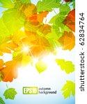 autumn background  eps10 | Shutterstock .eps vector #62834764
