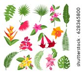 exotic tropical flowers and... | Shutterstock .eps vector #628365800