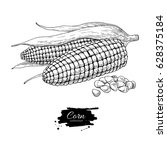 corn hand drawn vector... | Shutterstock .eps vector #628375184