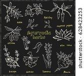 hand drawn set of ayurvedic... | Shutterstock .eps vector #628423253