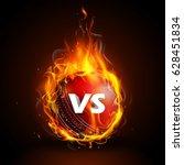 illustration of fiery cricket...