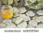 eucalyptus leaves and oil ... | Shutterstock . vector #628559564