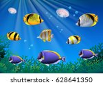 scene with colorful fish... | Shutterstock .eps vector #628641350
