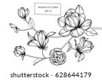 magnolia flowers drawing and... | Shutterstock .eps vector #628644179