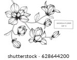 Stock vector magnolia flowers drawing and sketch with line art on white backgrounds 628644200