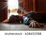 a victim of a violent crime...   Shutterstock . vector #628652588