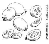 feijoa fruit graphic black... | Shutterstock .eps vector #628673618