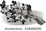 bunch of parsley  is white. | Shutterstock .eps vector #628688300
