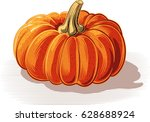 ripe pumpkin on a white... | Shutterstock .eps vector #628688924