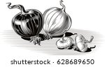 copper onion and white onion ... | Shutterstock .eps vector #628689650