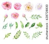 beautiful natural hand drawn... | Shutterstock . vector #628728830