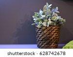 Wicker Basket. Flower In A...