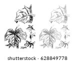 black and white and grayscale... | Shutterstock . vector #628849778