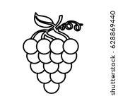 grapes fresh fruit icon | Shutterstock .eps vector #628869440
