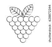 grapes fresh fruit icon | Shutterstock .eps vector #628872344
