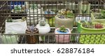 all kinds of potted succulents | Shutterstock . vector #628876184