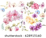 beautiful watercolor set with... | Shutterstock . vector #628915160