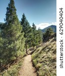 Small photo of Spring Hiking Trail at Eldorado Canyon State Park in Colorado - shadows in late afternoon