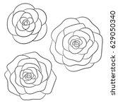 vector roses black outline on