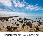 the stromatolites in the area... | Shutterstock . vector #629126720