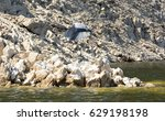 heron on rocky  | Shutterstock . vector #629198198