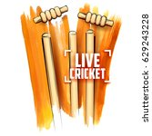 illustration of cricket stumps... | Shutterstock .eps vector #629243228