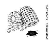 corn hand drawn vector... | Shutterstock .eps vector #629252348