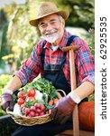 senior gardener with a basket... | Shutterstock . vector #62925535
