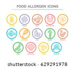 colorful food safety allergy... | Shutterstock .eps vector #629291978