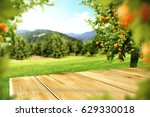 table space and orange fruits  | Shutterstock . vector #629330018
