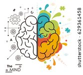 the mind brain human functions... | Shutterstock .eps vector #629361458