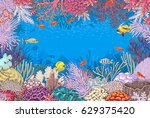 hand drawn underwater natural... | Shutterstock .eps vector #629375420