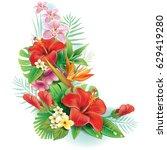arrangement from tropical... | Shutterstock .eps vector #629419280