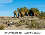 Small photo of Hiking in Thousand Palms Oasis Preserve in the Coachella Valley Preserve, Palm Springs