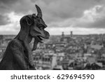 Gargoyle In Paris