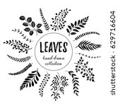 hand drawn branches collection. ... | Shutterstock .eps vector #629716604