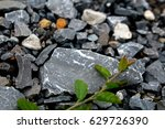 Gray Stones Lie On The Road On...