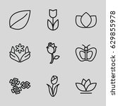 floral icons set. set of 9... | Shutterstock .eps vector #629855978