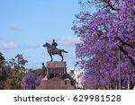 spring flowering jacaranda in... | Shutterstock . vector #629981528