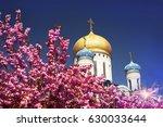 beautiful flowers of japanese... | Shutterstock . vector #630033644