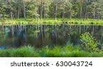 landscape of still water of the ... | Shutterstock . vector #630043724