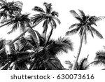 Palm Tree Leaf Black And White...
