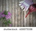 gardening border | Shutterstock . vector #630075338