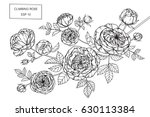 climbing rose flowers drawing... | Shutterstock .eps vector #630113384