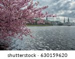 hamburg at springtime with... | Shutterstock . vector #630159620
